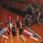 Lipstick, Pitbulls, and Puppy Dogs!
