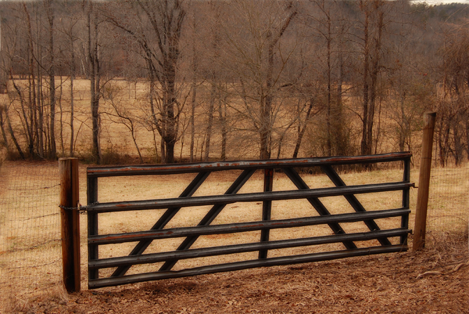 The Farm Gates of Stephens County – Cocoa Smiles