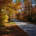 The Fall Road Home