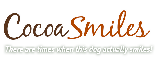Cocoa Smiles Logo