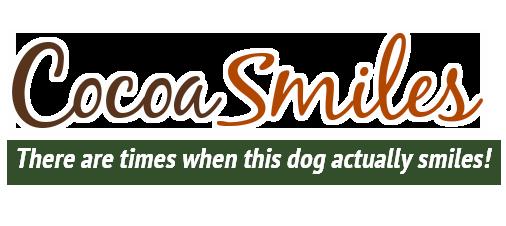 Cocoa Smiles Logo