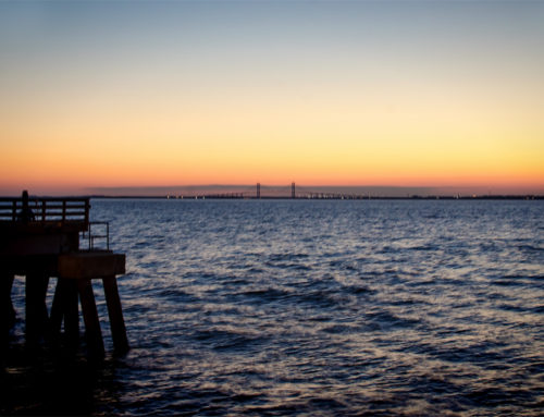 A Favorite for a Lifetime: St. Simons Island