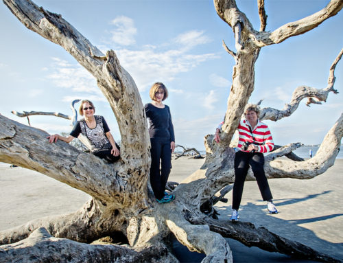 Lovin' Driftwood Beach