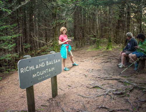 Hiking Richland Balsam Mountain