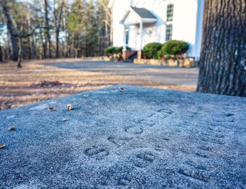 Wintering in Historic Rural Georgia