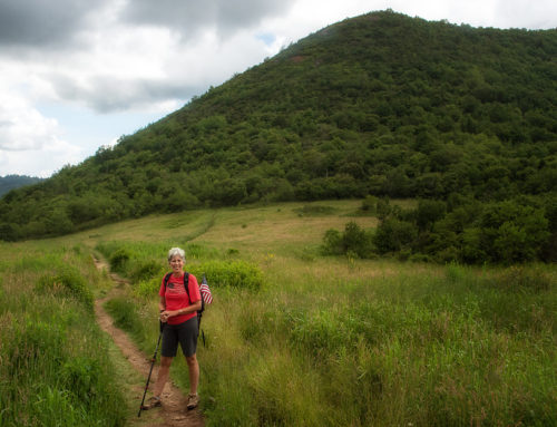 Made for the Mountains: Bagging Sam's Knob summit