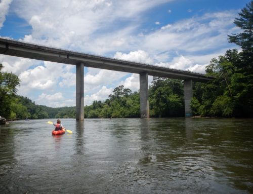 Paddling the French Broad River