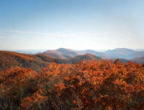 Albert Mountain: Right on the Appalachian Trail!