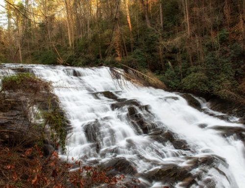Brasstown Falls and then BBQ