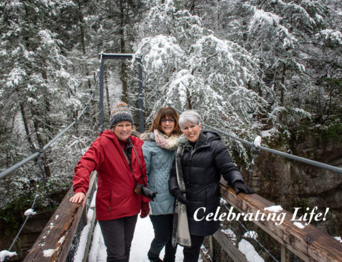 Tallulah Gorge in Snow
