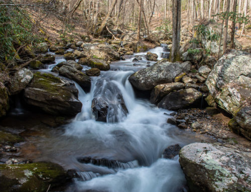 Fun with an ND Filter at Anna Ruby Falls