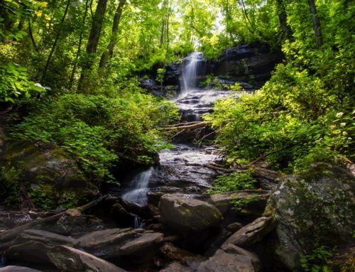 Hidden Falls, South Carolina