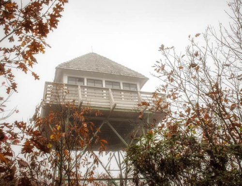 Rainy hike to the historic Green Knob Lookout Tower
