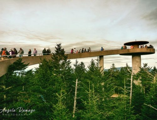 Clingmans Dome via the Forney Ridge Trail and AT