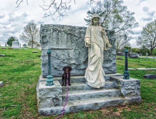 Westview Cemetery and Treat Angels