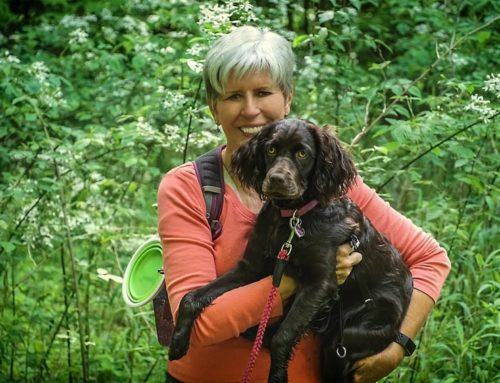 Surprising Hike to Rufus Morgan Falls
